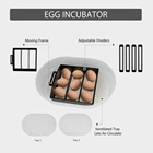 Machinery Warranty Chicken Incubator 2020 New JANOEL12 New Small Fully Automatic 9-12 Chicken Egg Incubator