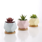 Blue Pots Pot For Wholesale Geometric Design Blue Small Cute Succulent Pots Ceramic Pots For Succulent Plants