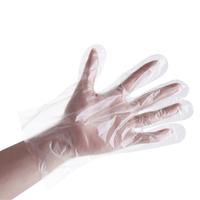 Biodegradable Polyethylene Safety Work Disposable Suppliers Other Plastic Pu Poly PVC Gloves