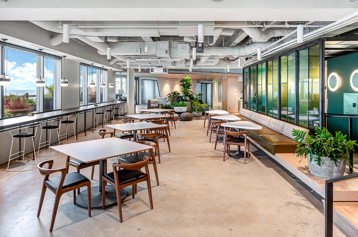 Professional Co Working Office Interior Design Service Layout For