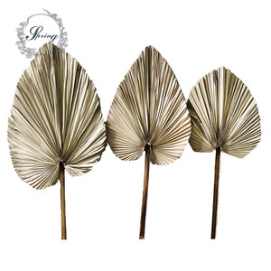 Instagram Dried palm leaves for wedding decor
