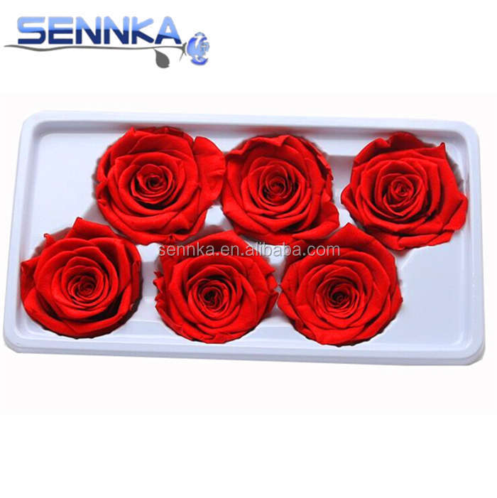 Sennka wholesale natural fresh preserved 5-6cm <strong>rose</strong> <strong>head</strong> in box