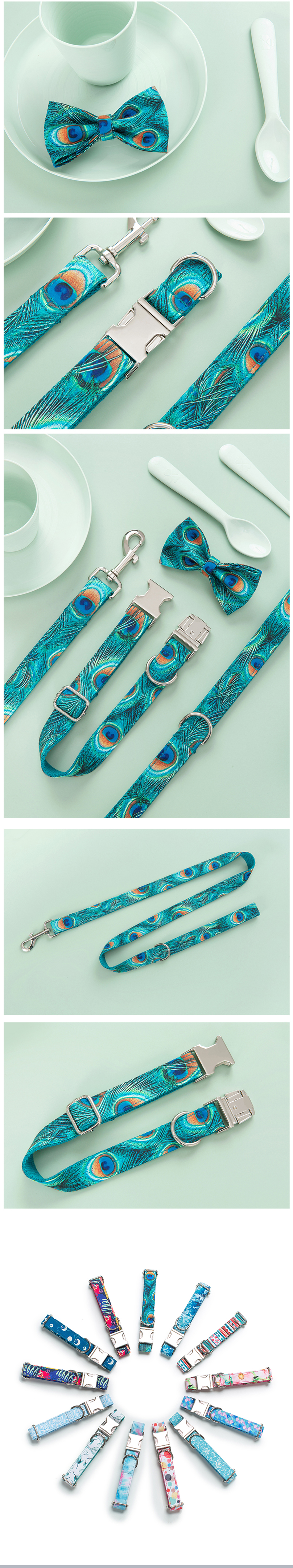 Shenzhen manufacturer OEM/ODM high quality pet products supplies innovative peacock personalized dog collar leashes