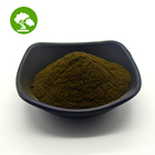 Black Ant Black Hot Sale Black Ant Extract Powder 10:1 In Bulk