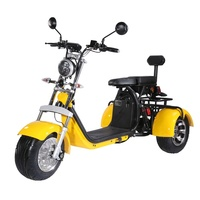 Europe warehouse 40ah 3 three wheels electric scooter eec coc citycoco trike