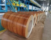 Ral 9019 ppgi for exporting color coated steel coil
