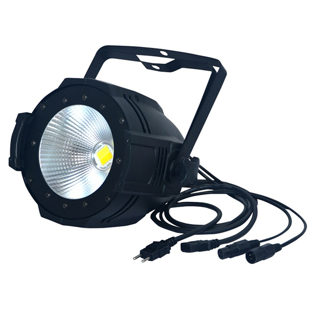 Cheap Price 200W COB Stage LED Par Light Warm White/Cool White