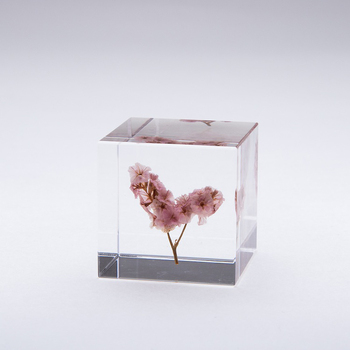 Small Acrylic Solid Display Block Perspex Block for Jewellery Counter Display Acrylic Shop Window Till retail Collectors