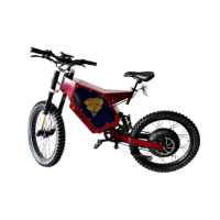 Christmas  Promotion!!!5000W enduro e bike high quality electric bicycle stealth bomber electric bike