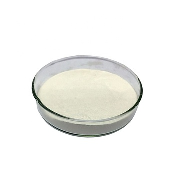 Sports Nutritional Alpha Ketoglutarate Acid (AKG),CAS:328-50-7