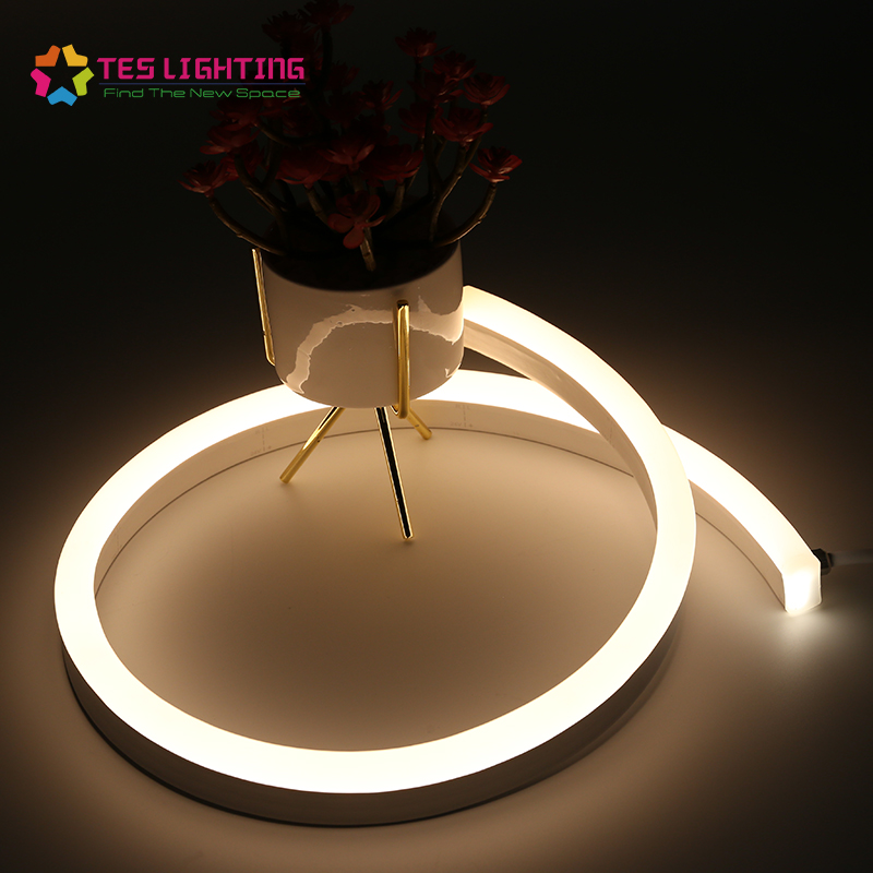 Outdoor IP68 Waterproof Strip Light Single color 24-volt rope 12 Volts Led Neon Tube
