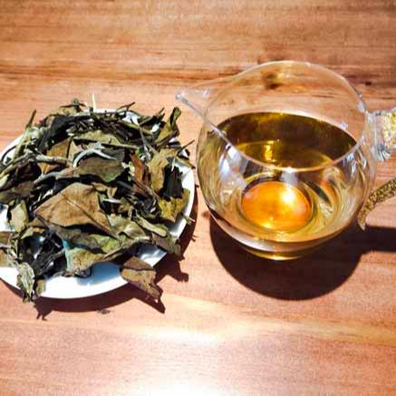 150g white tea ancient tree white tea - 4uTea | 4uTea.com