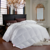 Professional Latest Breathable Close-Skin 100% Bamboo Comforter