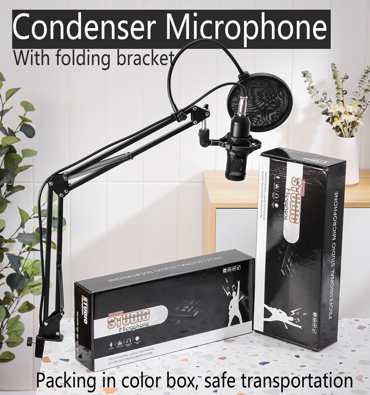 Foldable Mic Condenser Microphone Pro Audio Studio Sound Recording Arm Stand Filter