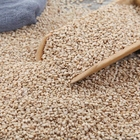 Wholesales High quality 1kg Chinese Roasted Nature sesame seeds White Sesame seeds for Sushi