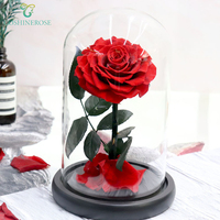 Luxury Dubai Decorative Real Touch Roses White Preserved Flowers In Glass Dome