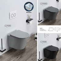 PATE matt cement grey wall mounted wc toilet CE rimless wall hung grey toilet