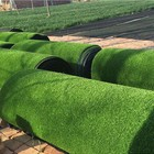 Lawn Grass Lawn Artificial Grass Customized Decor Turf Lawn Carpet Plastic Synthetic Artificial Grass