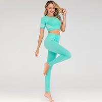 2020 custom fitness athletic gym apparel wear seamless gym set nylon woman sportswear 2 piece outfit