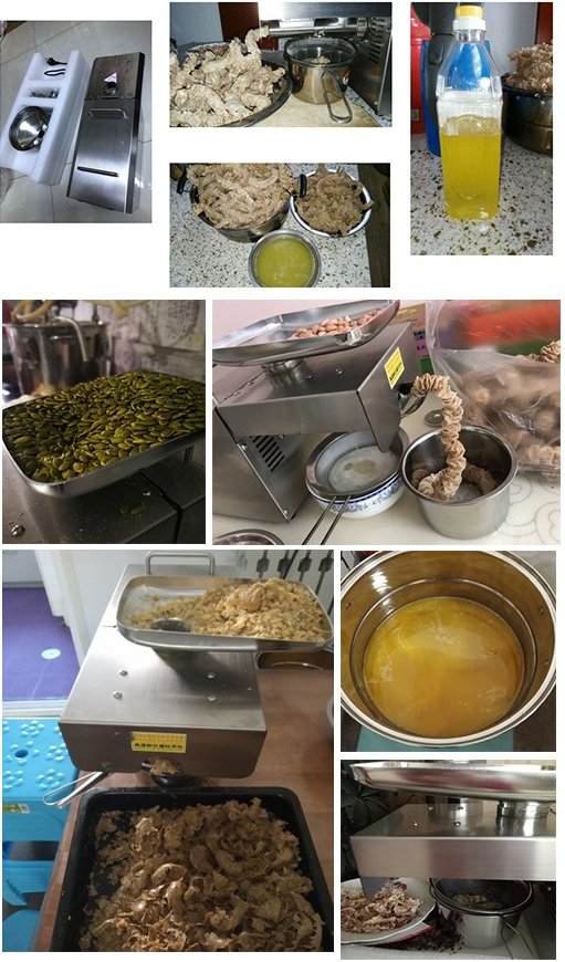 Safe and reliable black seed oil extraction machine/almond oil making machine/home small oil presser