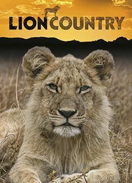 狮子王国 第二季