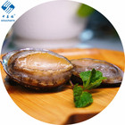 Supply for high-quality shelled and Without Shell abalone