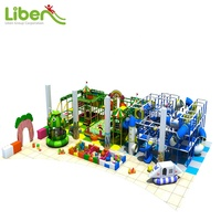 Forest Theme Indoor Playground Equipment, Children Fun Kids Playground, Tuv Certificate Amusement Park Rides