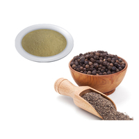 Black Pepper 95% Piperine Black Pepper Extract Powder