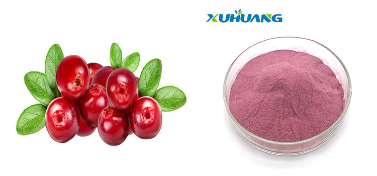 Factory Supply Cranberry Fruit Extract