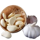 good garlic price