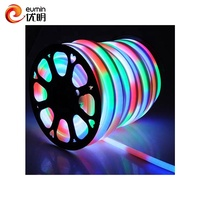 indoor and outdoor used waterproof AC 110V multicolor strip led light color changing led neon rope light