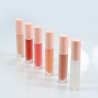 New magic fashion matte velvet liquid lipstick private label lip gloss make you own brand OEM&ODM