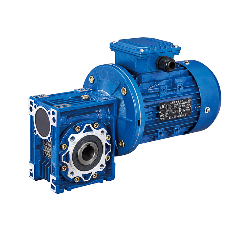 Worm gearbox with electric motor