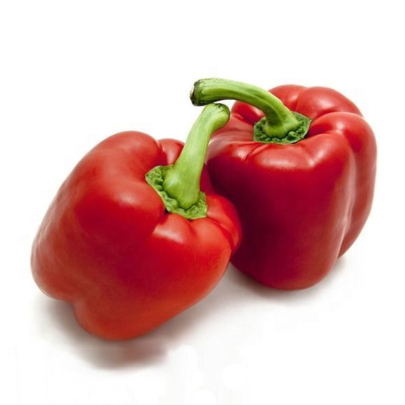 Hybrid f1 red sweet <strong>pepper</strong> <strong>seed</strong> 739