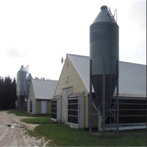 Steel Structure Farm Broiler Poultry House Shed Construction