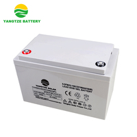 Yangtze 12v 100ah Wholesale solar dry battery for inverters