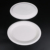 Disposable Bagasse Sugarcane Plate white Biodegradable Paper Plate