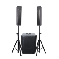 Accuracy Pro Audio WI312ADUSB-BT Wooden Active Column Speaker Powered Portable Live Sound System With Bluetooth