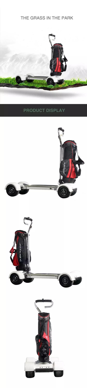 golf GT-Details4.jpg