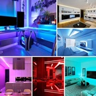 Ready Stocks CE FCC Indoor or Outdoor Decoration RGB light strip 12V IR RF Control flexible waterproof LED strip light 2835