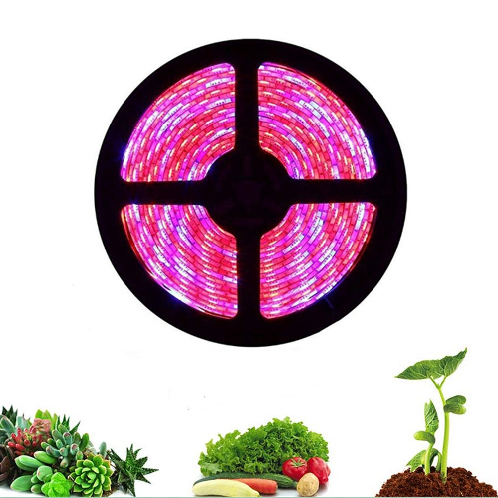 New Style 5050 Waterproof SMD Led Grow light strip for indoor plants