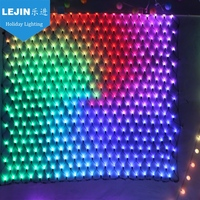 New design china best service outdoor colorful net lights smart RGB holiday lights