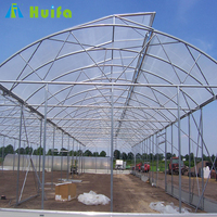 Tropical Polythene Multi Span Greenhouse for Agriculture