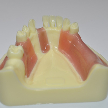 Onderwijs demonstratie studie tand <span class=keywords><strong>model</strong></span> dental implant training practice <span class=keywords><strong>model</strong></span>
