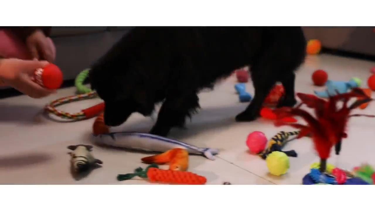 Amazon Лидер продаж керамика чаша собака Бамбук Деревянные повышенные стенд подачи собака чаши