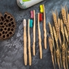 /product-detail/cheap-bamboo-toothbrush-60625461047.html