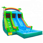 Adult Giant Amusement City, Inflatable Commercial Water Park slide