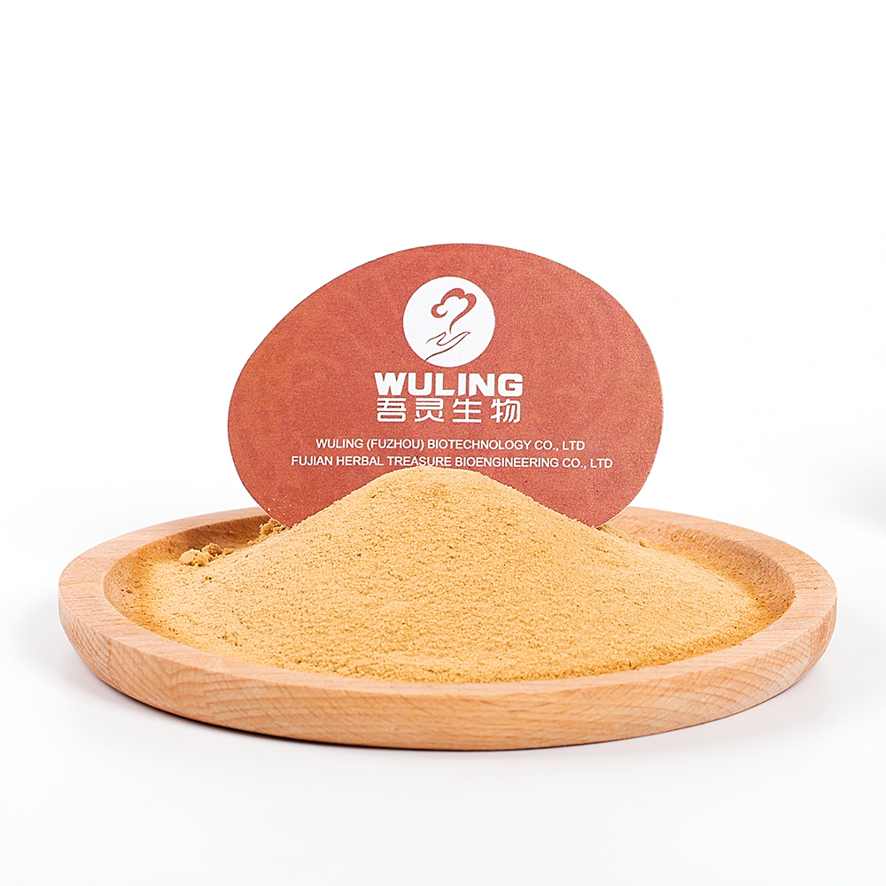 Food Supplement 100% Organic Lions Mane Mushroom Extract Powder Best Price
