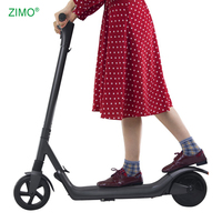 China Waterproof 250w Cheap Off Road Mobility Foldable Adult Kick Electric Scooter
