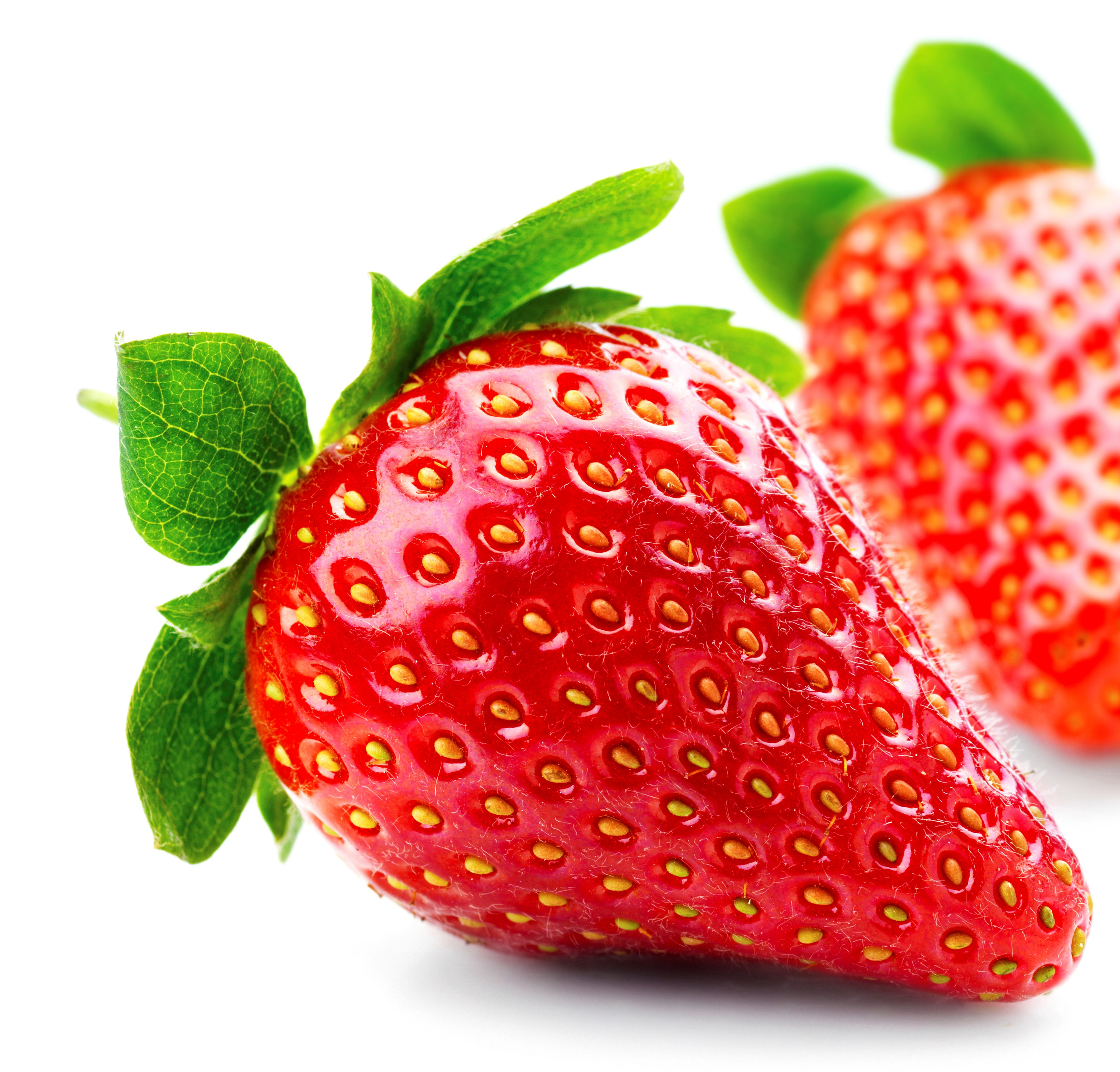 US Grown Red Fruit Fragaria <strong>STRAWBERRY</strong> Robinson <strong>Fresh</strong> MOQ 1 LBS Quick Delivery <strong>in</strong> US